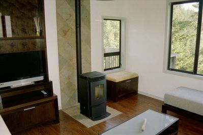 Living Room with Wood Pellet Stove