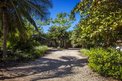 Entrance to Casa Ohana, lush landscape offers privacy and serine setting.