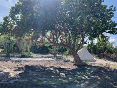 Photo for Seagrape Glamping, Small Hope Bay, Andros