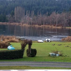 Photo for Lovely Lake House Retreat, relax, fish, mountain bike, hike, hang out & exhale!