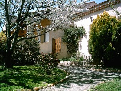 Photo for House in Provence in the Alpilles - Eyguières