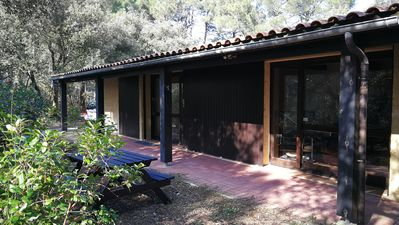Photo for House in the pines 300 m from the lake and 5 km from the ocean