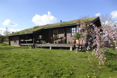 Photo for 4 bedroom accommodation in Rønde