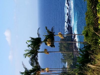 Photo for Hawaiian cabin with rustic flare.  Tropical setting on private acre.