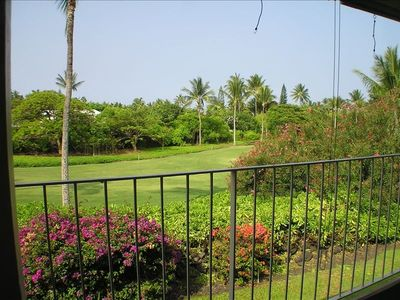 Beautiful golf course view with tropical foliage