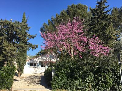 Photo for Villa completely renovated, 6 people, at the gates of Avignon