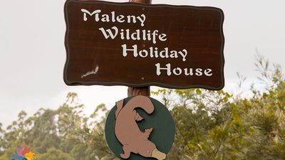 Photo for Maleny Wildlife Holiday House 4 or (5th bedroom downstairs for extra cost)