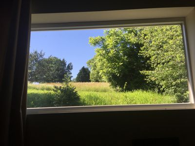 View from the Bedroom. Most days, Deer or turkeys can be spotted