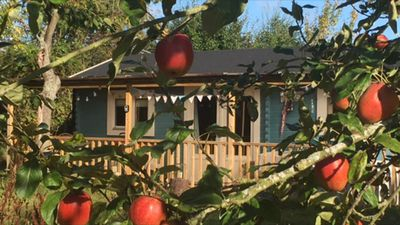 Cuttermoon Lodge is nestled in a Cherry, Plum and Apple orchard within 5 acres.