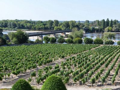 Photo for Holidays in Pouilly / Loire overlooking the Loire and the vineyards ranked 2 stars