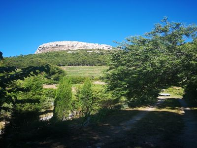 Photo for Pretty old house renovated in the middle in the vineyards 5 minutes from Cassis center