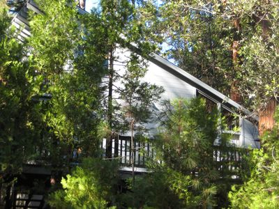 Photo for Family Cabin - Quiet Location - Large Private Deck - Lake Member