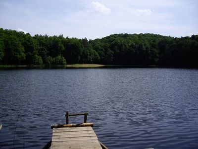Photo for Bungalow at the forester Thursee in the middle of the forest on Thursee, a 4-acre lake
