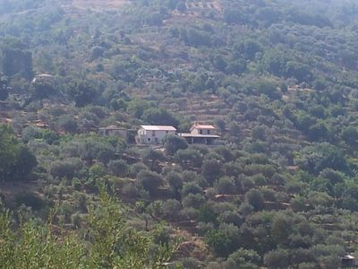 Photo for Holiday house in the middle of an olive plantation with fantastic sea view