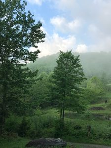 Photo for Cabin Calm by Grayson Highlands Park