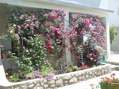 Photo for 1BR Apartment Vacation Rental in Pag, Island Pag