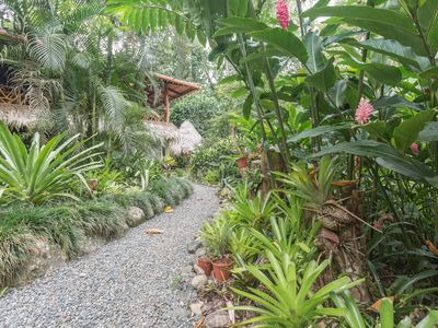 Photo for Jungle living at it's finest! Sleeps 2-9 persons in Caribe's most desired area.
