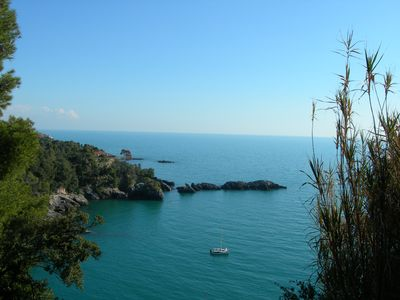 Photo for OLIVE TREES AND SEA to TELLARO of LERICI