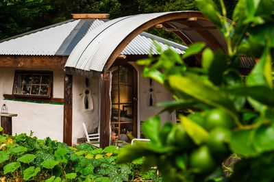 The Cob Cottage -lovingly built by hand from all natural materials