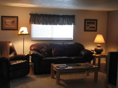 Nice relaxing leather sofa and chair in living room
