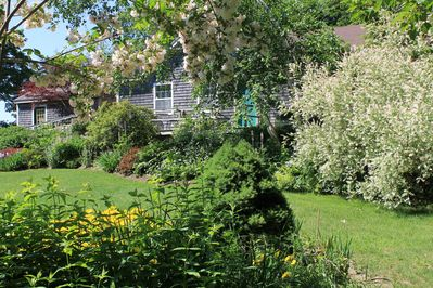 Your front deck overlooking the lawn and gardens.