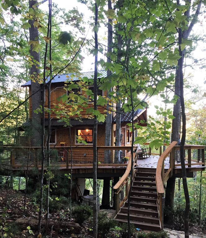 how to build a tree house in the forest