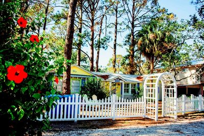 Welcome to Sandy Toes Cottage!