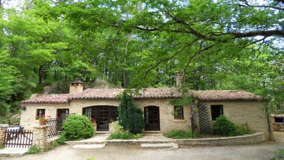 Photo for Stunning perigordian stone house set in a pine forest 4km from Lascaux 4