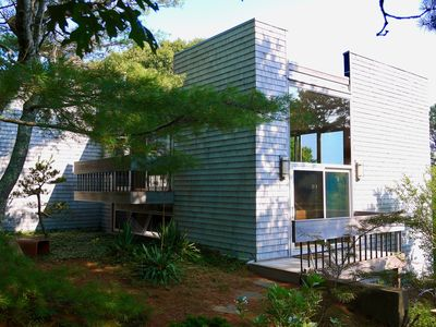Photo for Light-Filled Cape Modern Overlooking the Woods (Truro)
