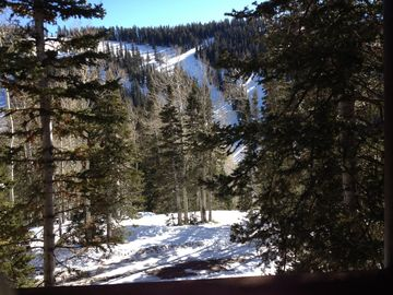 'Roomy Mountain Living' with ski in/out located facing Resort Lodge & lifts.