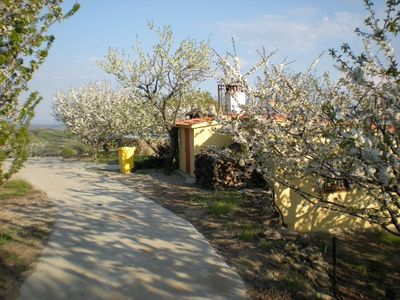 Photo for Self catering Mirador Los Cotos for 4 people