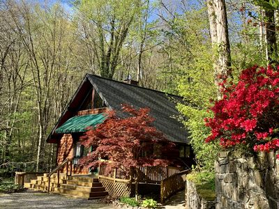Photo for 2 Bd 2 Ba Cabin Secluded Near Town Rushing Creek Handicap Friendly Hot Tub
