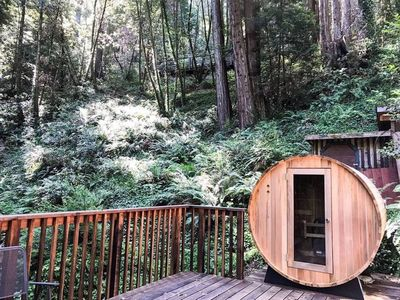 Photo for Studio surrounded by redwoods