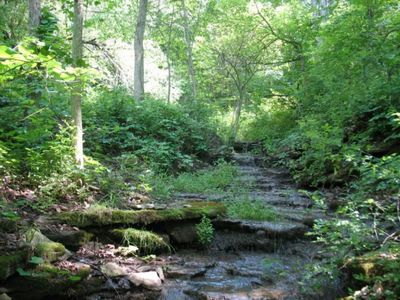 Photo for A Bagley Cabin In The Woods-Wyalusing Park 3 miles/ 12 miles to Prairie du Chien