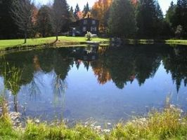 Photo for 2BR Cabin Vacation Rental in West Glover, Vermont