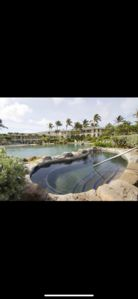 Photo for Oceanfront at The Point at Poipu, 2 bd 2 ba