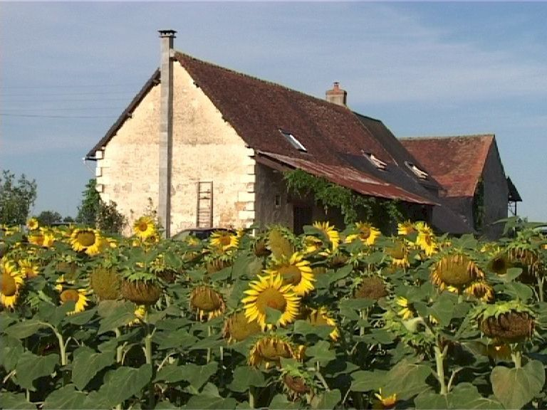 Rustic Farmhouse in Peaceful Setting - Loire/Indre, France