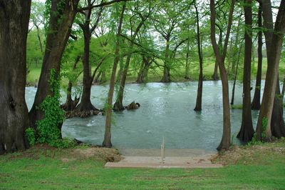 Easy access to the Guadalupe River