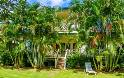 The rear of the house is screened by these palms for privacy