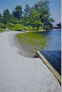 Photo for Great swimming beach! Private 384' Sandy Shoreline,Dock,4bdr cottage on 4.8acres