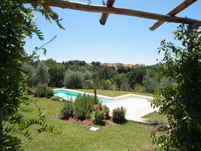 Photo for Large garden and beautiful swimming pool surrounded by olive threes