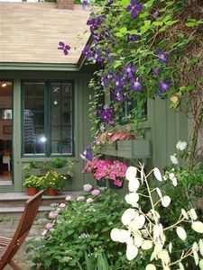 Photo for Seaside Garden: 2 min walk to the Bay, peaceful, private, bird haven