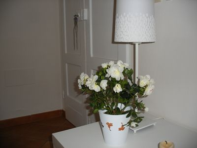 Photo for THE NATURAL PARK ... colors, perfumes, initmità! Nice apartment