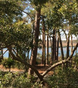 Spectacular view of the Kiawah River off the back of the cottage