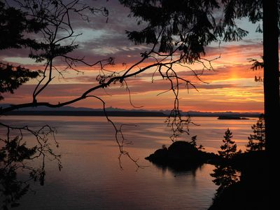 Photo for Sunshine Coast Gem : Close to Savary Island with conveniences of the Mainland