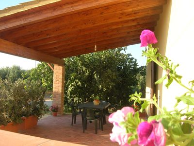 Photo for Casa Fra Gli Ulivi - country house