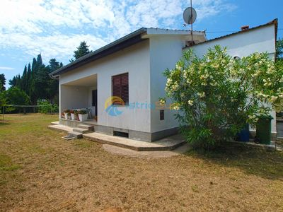 Photo for Apartment 1681/17427 (Istria - Premantura), Budget accommodation, 250m from the beach