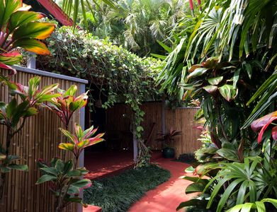 Beautiful enclosed garden and  a pergola of tropical vines shading the lanai.