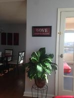 Photo for 2BR Apartment Vacation Rental in Collingswood, New Jersey