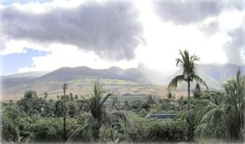 The view from the mountain side lanai.